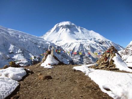 Dhaulagiri Circuit Trek Thapa Pass Yak Kharka Thorong Peak Annapurna Trail Italian Base Camp