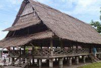 Asal Provinsi Rumah Adat Baileo