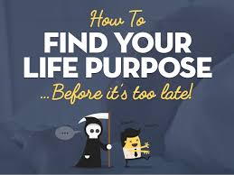 How to find life purpose