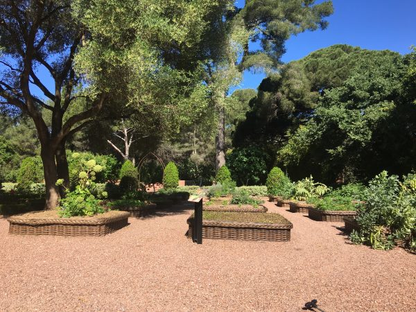 Jardins - Potager