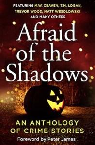 AfraidoftheShadows300