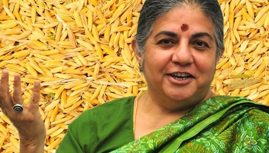 Vandana Shiva, la primera enemiga de Monsanto