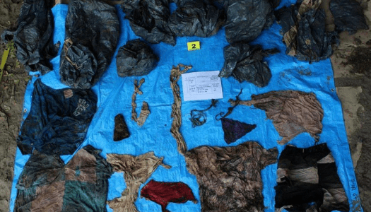 Pedazo de país: 166 restos humanos en fosa clandestina de Veracruz