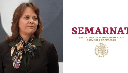 No sólo Velasco suena en Semarnat, también Martha Delgado