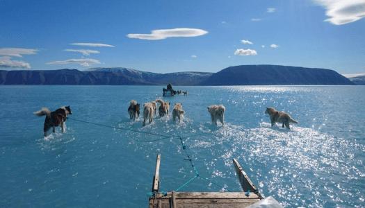 El cambio climático sí existe; la COP25 es una oportunidad para frenarlo