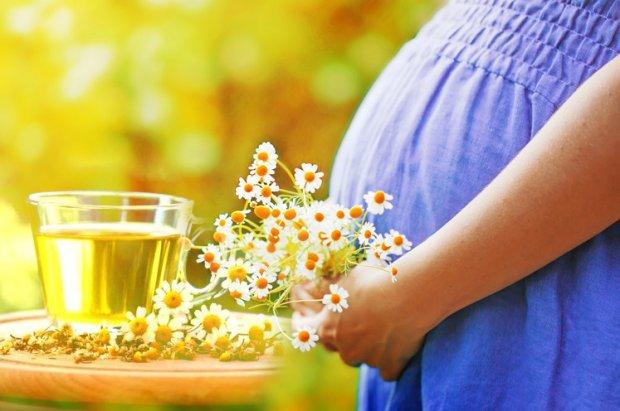 Blog - Post - Dieta cu ceai de mușețel