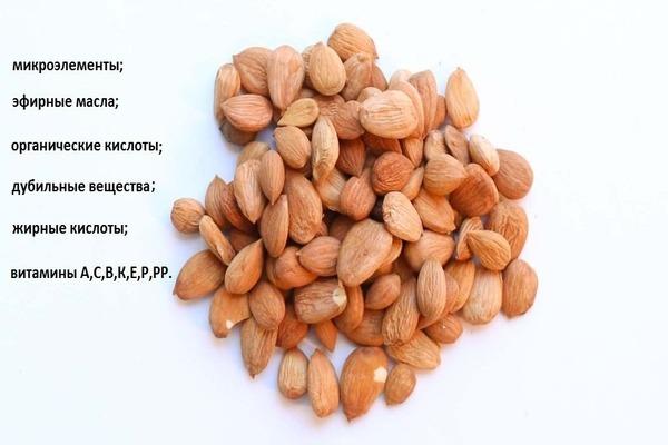 Косточки персика польза и вред