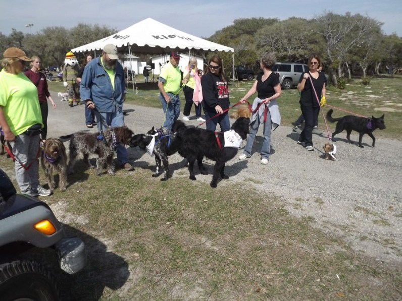 Canine Event