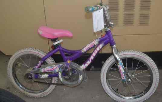Case #1500016553Girls-Bike