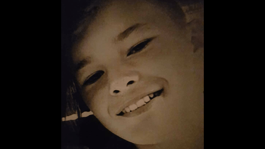 Missing Hartlepool boy aged 12 is found 3