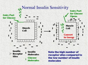 Police psychology, Insulin Resistance?