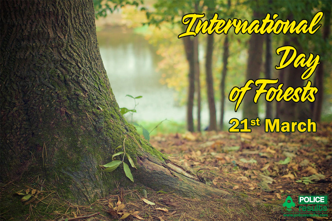 Identifying and solving carriers to collaboration · rainforest partnership presents: Logo World Forestry Day 2021 Theme Slogan Poster Quotes Images Messages