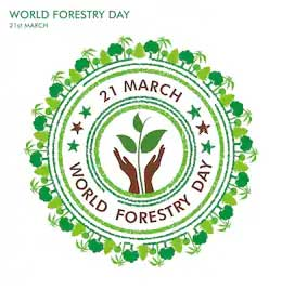 """International day of forests 2021 theme has been declared as is """"forest restoration: Logo World Forestry Day 2021 Theme Slogan Poster Quotes Images Messages"""