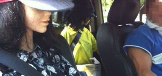 Mannequins in Car