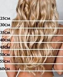 длина волос шкала