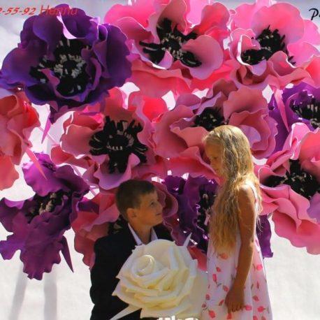 Большие красивые цветы