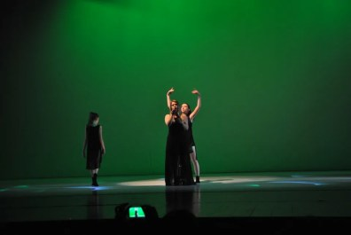 danza-e-musica-con-polinote-05