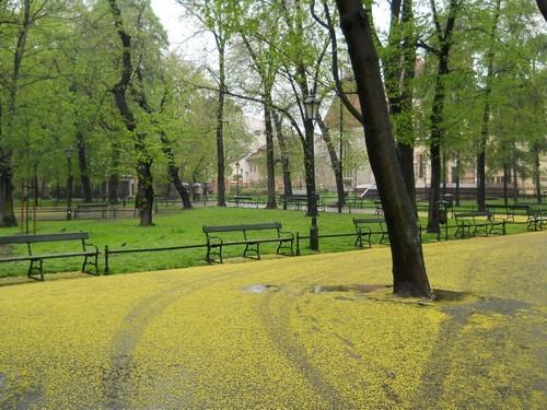 beautiful life Poland