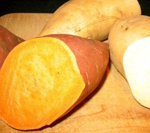 Cheese and Potato Pierogi