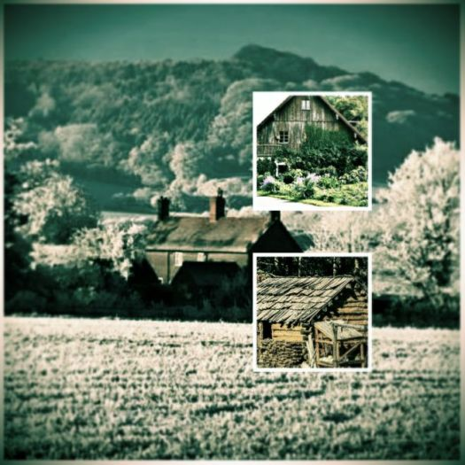 homesteading preppers