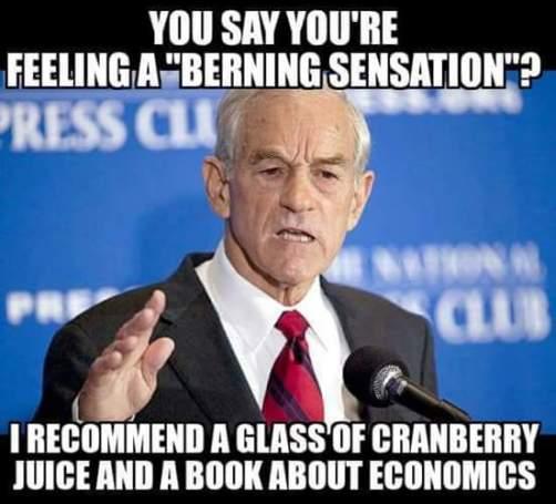berning-sensation-ron-paul-economics-textbook