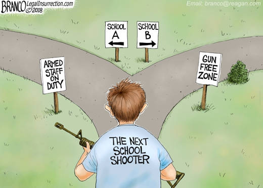 gun-free-zone-school-shooter which to choose
