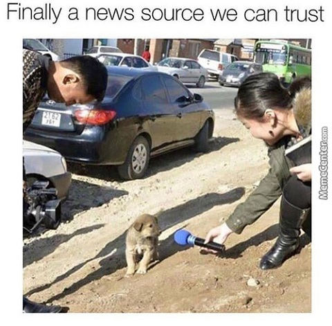 news-source-we-can-trust-puppy