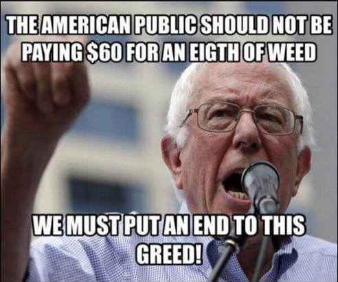 Image result for funny bernie sanders pics