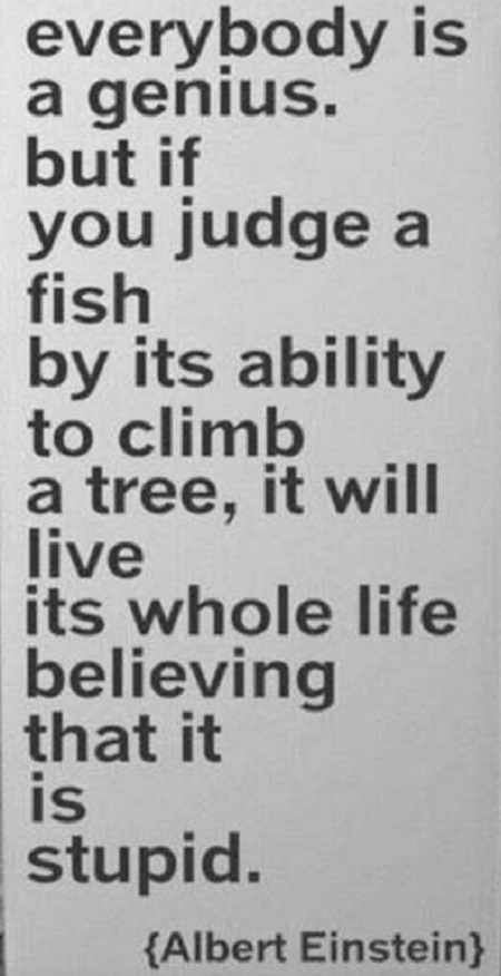everybody-is-genius-judge-fish-by-ability-to-climb-tree-einstein-albert