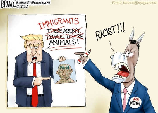 media-immigrants-animals-ms13-comment-trump