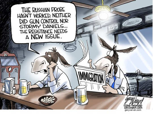 russian-probe-stormy-danields-didnt-work-need-immigration-issue