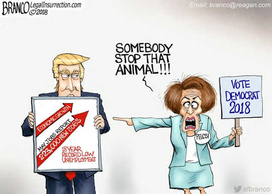 trump-pelosi-must-stop-that-animal-record-unemployment