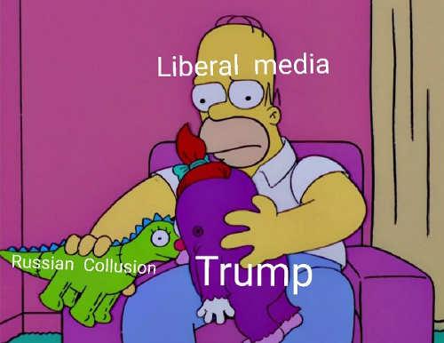 liberal-media-trump-russia-collusion-homer-simpson