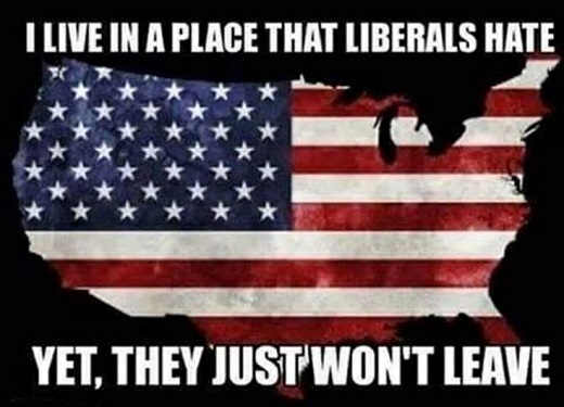 live-in-a-place-liberals-hate-but-wont-leave-usa-map