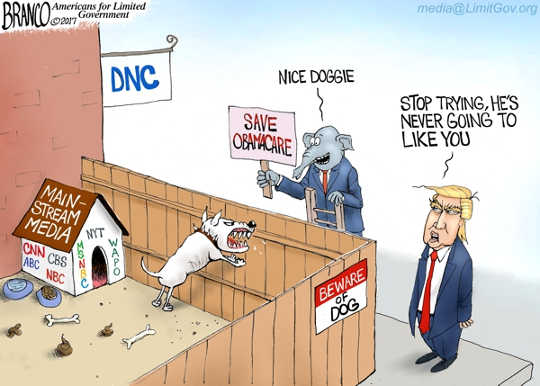 mainstream-media-obamacare-nice-doggy-trump-theyll-never-like-you