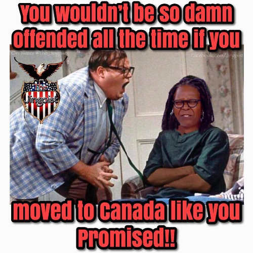 you-wouldnt-be-so-damn-offended-all-the-time-if-you-move-to-canada-whoopi-goldberg