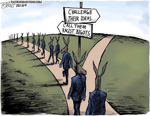 democrats-challenge-their-ideas-call-them-racist-bigots