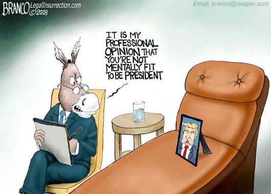 dems-its-my-professional-opinion-trump-mentally-unfit
