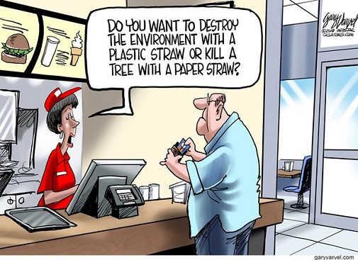 do-you-want-straw-kill-environment-paper-kill-tree-restaurant-choice