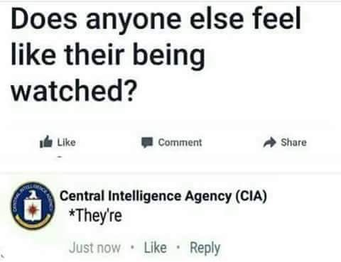 does-anyone-else-feel-like-being-watched-cia-theyre