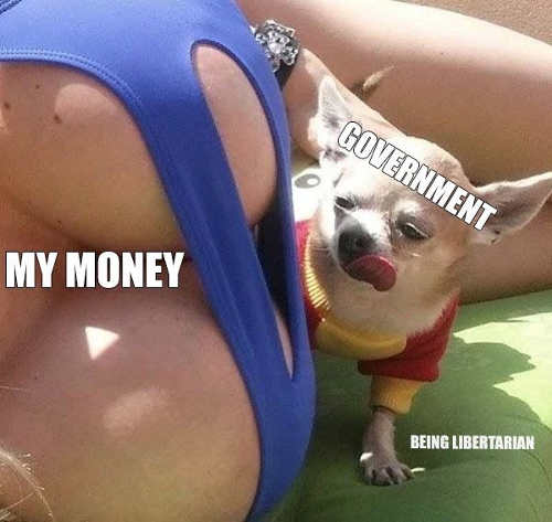 government-my-money-boobs-dog-licking-chops