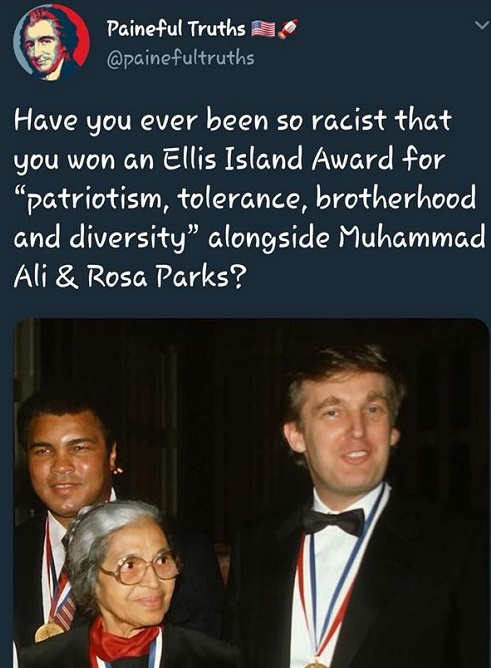 have-you-ever-been-so-racist-won-award-by-ali-rosa-parks-donald-trump