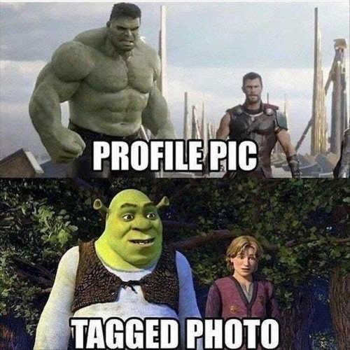 profile_pic-tagged-photo-hulk-thor-shrek
