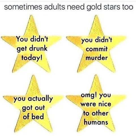 sometimes-adults-need-gold-stars-didnt-get-drunk-or-commit-murder