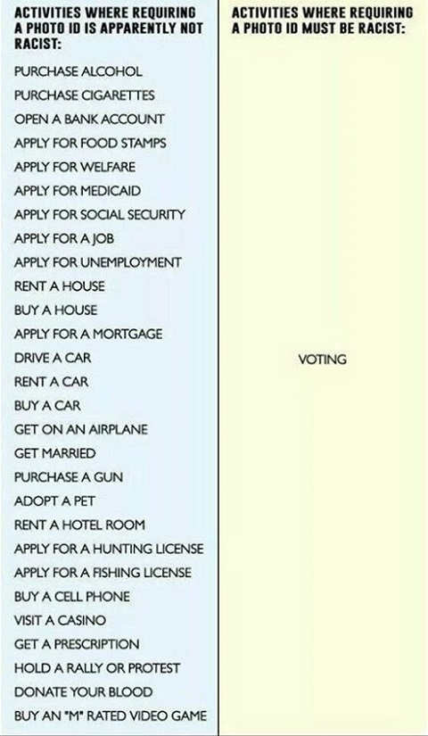 voter-id-laws-racist-food-stamps-driving-fishing-alcohol-tobacco-all-require-IDs