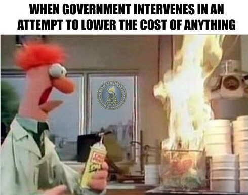 when-government-interferes-attempt-to-lower-cost-of-anything-beaker-fire