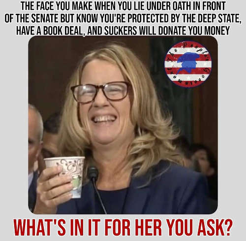 christine-ford-face-you-make-when-lie-under-oath-but-protected-by-deep-state-have-book-deal-suckers-donate-money
