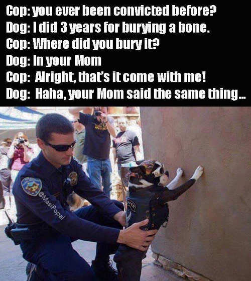 dog-getting-frisked-by-cop-where-did-you-bury-bone-in-your-mom