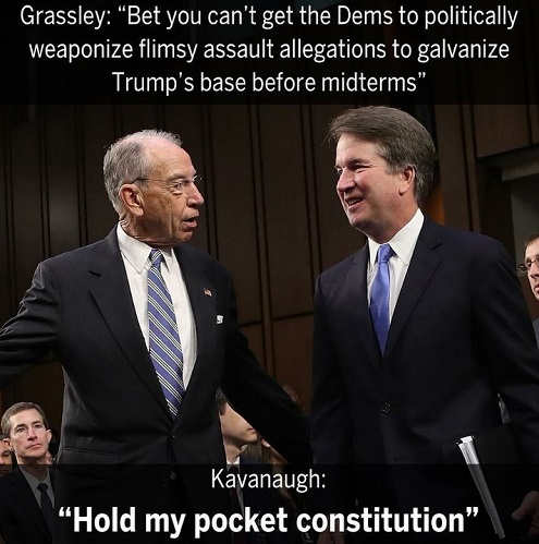 grassley-bet-you-cant-get-democrats-to-politically-weaponize-flimsy-allegations-to-galvinize-trump-base-kavanaugh-hold-my-constitution
