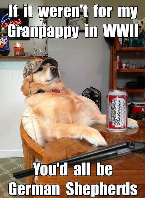 if-it-werent-for-my-grandpappy-youd-all-be-german-shepards